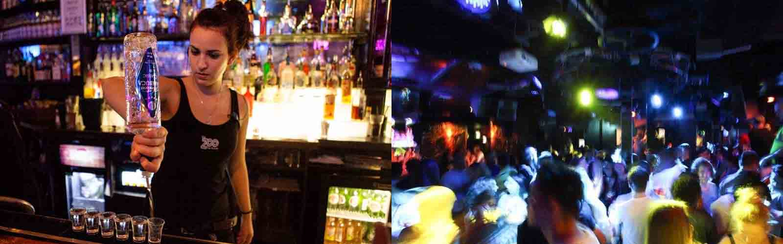 Enjoy a great night at the zoo bar with a London Nightlife Ticket